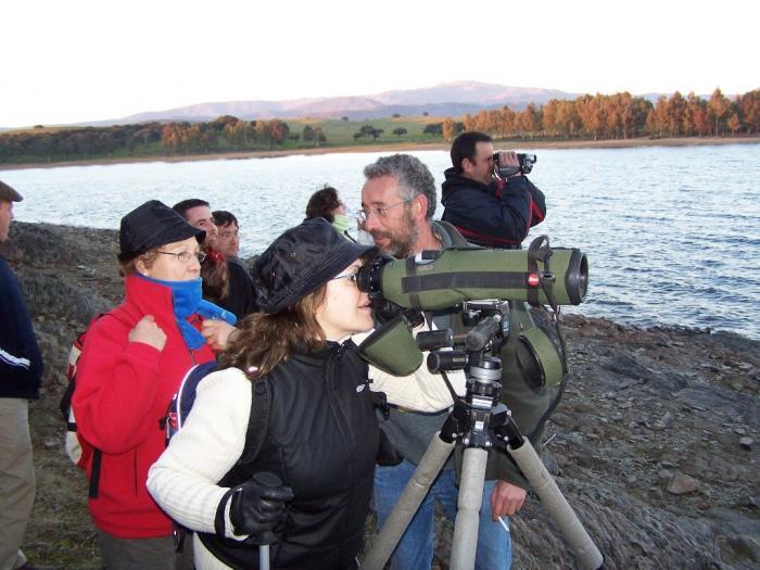 Adenex aconseja el embalse de Borbollón para contemplar las grullas que invernan en Extremadura