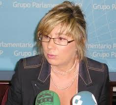 El PP exige el cese de Viñuela y responsabilidades políticas a Fernández Vara por el caso Feval