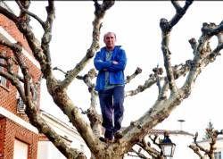 El grupo ecologista Adenex cree un despropósito las podas de los árboles en Aldeanueva de la Vera