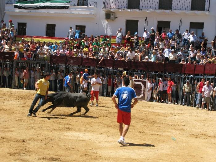 Moraleja estrenará el próximo año una nueva plaza de toros en las fiestas