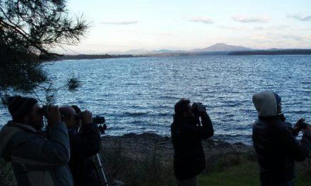Ecologistas alerta de que lo sucedido en Valdecañas abre un precedente para construir en zonas como el Borbollón