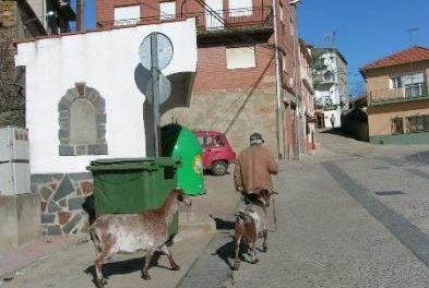 Villamiel solicita a Mirat que establezca varios días fijos a la semana para realizar el transporte regular de viajeros