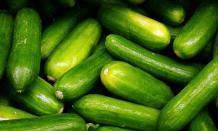 """La Cámara de Comercio se pone a disposición de los agricultores afectados por la crisis del la bacteria """"E. coli"""""""
