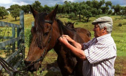El ganadero Enrique Serrano preocupado por su amigo Ortega Cano: «es una persona que lo da todo»