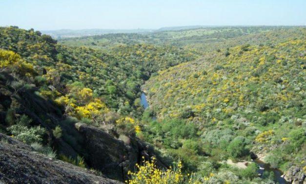 La Asociación Andares solicita la designación de Área Importante para las aves para el Valle del Alagón