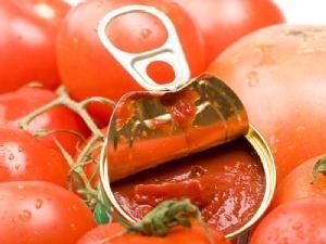 La producción de tomate en Extremadura sufre una merma del 20% por las condiciones meteorológicas