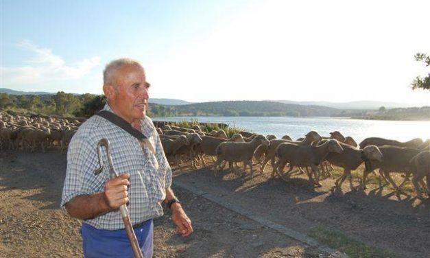 APAG Extremadura Asaja critica que las ayudas al ovino y caprino se convoquen con sólo tres días de antelación
