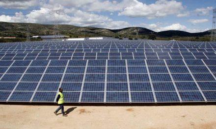 Energías Especiales de Extremadura instala una planta termoeléctrica de 230 hectáreas en Guijo de Coria