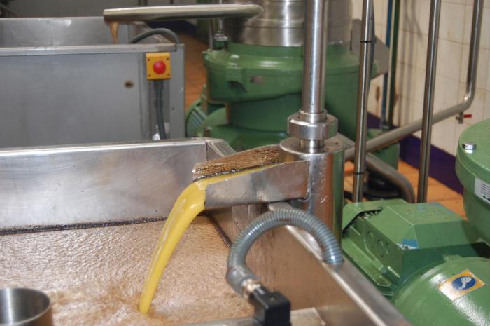 La Cooperativa La Milagrosa de Monterrubio exportará a China y Brasil su aceite con denominación de origen