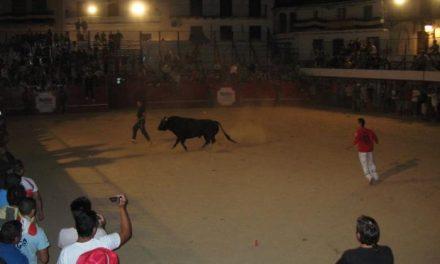 Los primeros festejos taurinos populares de Moraleja concluyen sin heridos ni incidentes