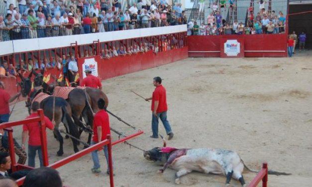 Vuelta al ruedo para un toro de Carmen Valiente en la novillada de Moraleja, donde se cortaron cinco orejas