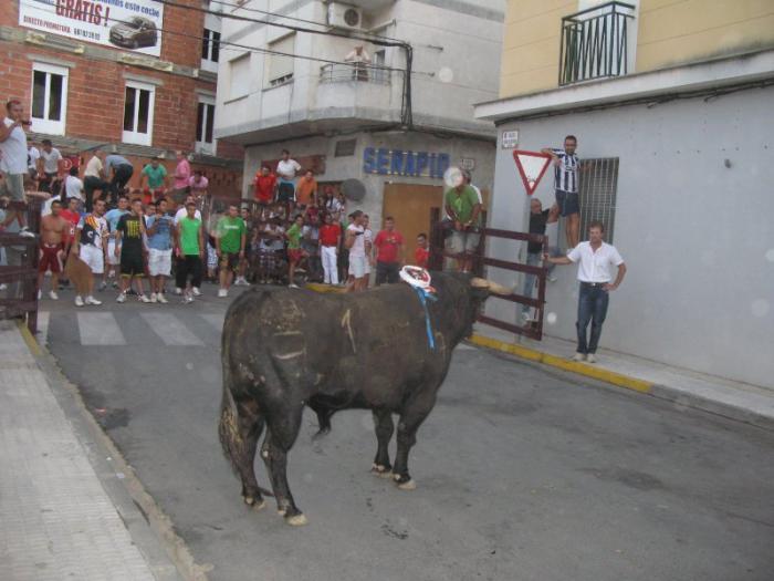 Tres personas resultan contusionadas y heridas leves en la lidia de la vaca y el toro de la madrugada
