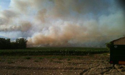 Los técnicos del Plan Infoex dan por controlado el incendio que se originó en la comarca de La Vera