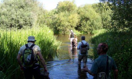 Andares organiza este domingo la VII ruta del Estío que saldrá antes del amanecer de Montehermoso