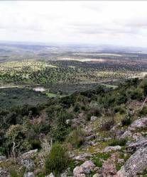 Un seminario que se celebrará mañana en Alcántara debatirá sobre los espacios naturales protegidos