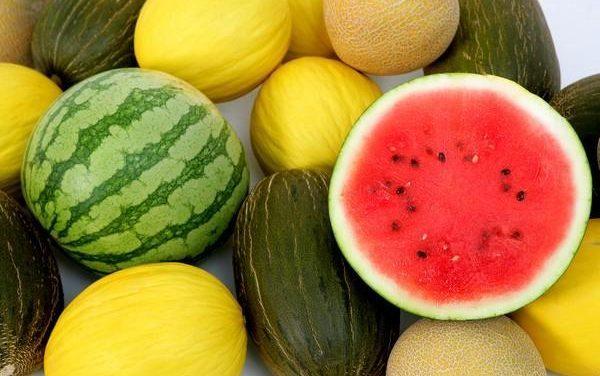 El melón y la sandía son las frutas mas consumidas en los hogares españoles durante el periodo de verano