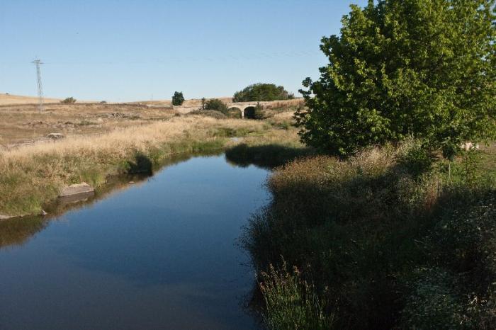 Medio Ambiente incluye un proyecto del río Magasca de Adicomt en la estrategia de restauración de ríos