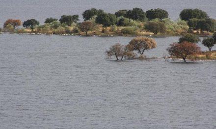 Ecologistas lamenta que Alqueva sirva sólo de referente turístico después de toda la diversidad destruida