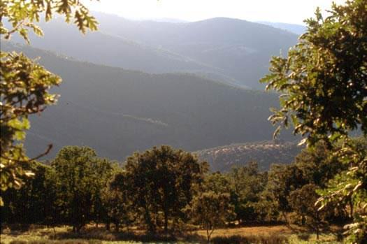El Ministerio de Medio Ambiente apoya el turismo sin barreras a través de rutas por la comarca de Tentudía