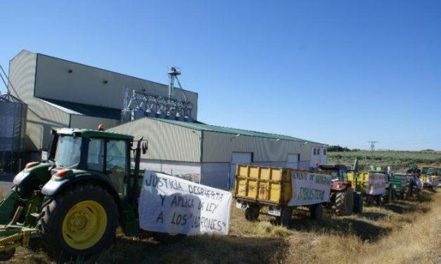 Los agricultores de Llerena afectados por los impagos de la empresa protestan ante la sede de Namigran
