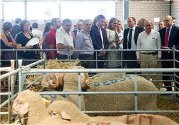Monago se compromete a impulsar la productividad del sector ovino extensivo con una línea de ayudas