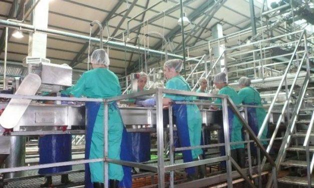 Extremadura registra en julio la mayor caída de la producción industrial de todo el país, un 20,8 por ciento