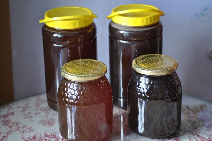 Los apicultores defienden la calidad de su miel ante la presunta relación con el maíz transgénico