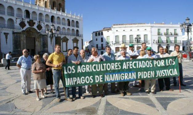 Medio centenar de agricultores afectados por las deudas de Namigrán se concentran en Llerena