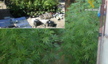 La Guardia Civil detiene a 22 personas en La Vera acusadas de tráfico de drogas y cultivo de marihuana