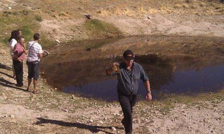 Ecologistas en Acción estudia interponer una denuncia a una industria olivarera por vertidos contaminantes