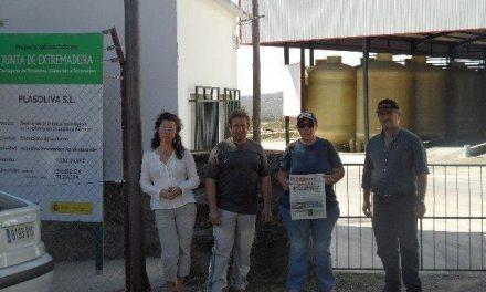 Ecologistas en Acción demanda a la empresa olivarera de Eljas que recupere el área degradada