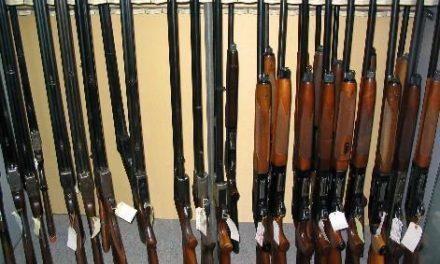 Moraleja acogerá un curso intensivo para preparar a los aspirantes a obtener la licencia de caza