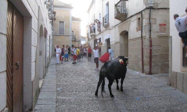 El Ayuntamiento de Coria modificará el empedrado de la ciudad para facilitar el tránsito de los peatones