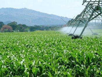 Extremadura pide al Gobierno liberar 8.000 hectáreas para su conversión en regadíos privados