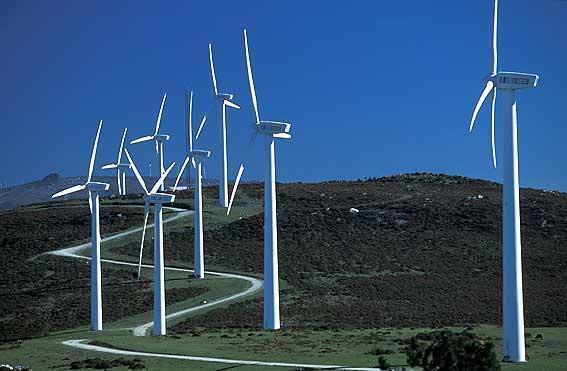 """Doce colectivos sociales aseguran que Extremadura no es el """"lugar idóneo"""" para implantar parques eólicos"""