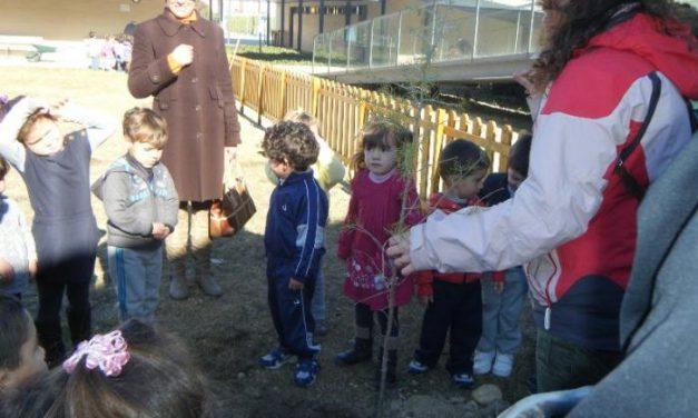 Los alumnos de Hervás participan en la reforestación y ornamentación del entorno escolar del colegio