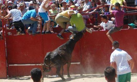 Moraleja comienza a redactar el reglamento taurino con la intención de que entre en vigor en San Buenaventura