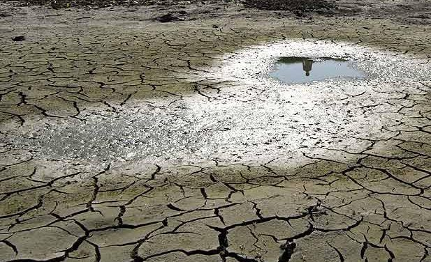 Agricultura pide al Ministerio una reducción del IRPF para los sectores afectados por las adversidades del tiempo