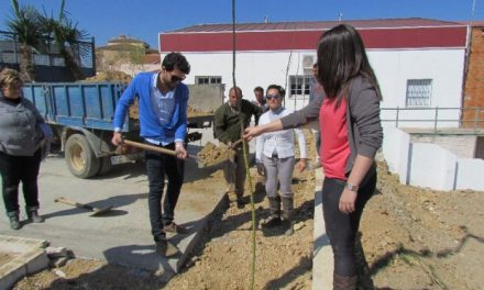 Escolares, voluntarios y alumnos del taller Massfuturo participan en Salorino en el I Día del Árbol