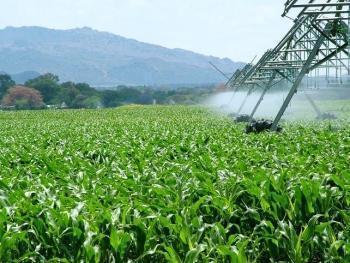 El consejero de Agricultura se compromete a mantener las ayudas a la modernización de regadíos