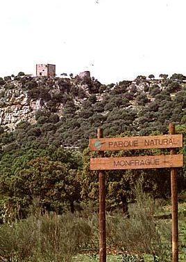 Patrimonio Cultural participa en un seminario para promocionar Plasencia-Monfragüe-Trujillo
