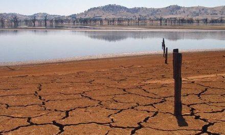 Apag Extremadura Asaja espera medidas concretas contra la sequía en el Consejo de Gobierno