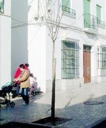 El tercer juzgado de Primera Instancia e Instrucción de Almendralejo abre hoy en una casa solariega
