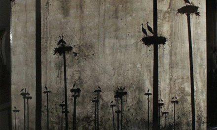 """La exposición """"Coexistir"""" del artista Nacho Lobato llega al Museo Pérez Comendador-Leroux de Hervás"""