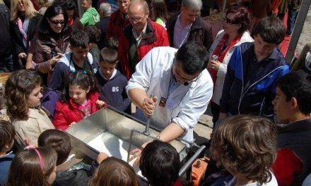El taller de elaboración de queso centra la atención en la Plaza Mayor de Trujillo durante la feria quesera
