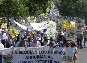 """Más de 2.000 agricultores, según los convocantes, reclaman en Mérida medidas """"reales"""" frente a la sequía"""