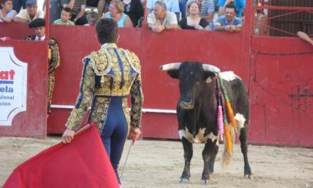 Las fiestas de San Buenaventura de Moraleja suprimen una novillada en la feria taurina de julio