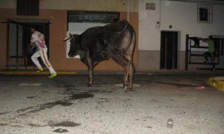 El recorte de 30.000 euros en San Buenaventura en Moraleja obliga a suprimir las vaquillas de la madrugada
