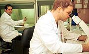 La Junta convoca ayudas por valor de 1.800.000 euros para la consolidación y apoyo a grupos de investigación