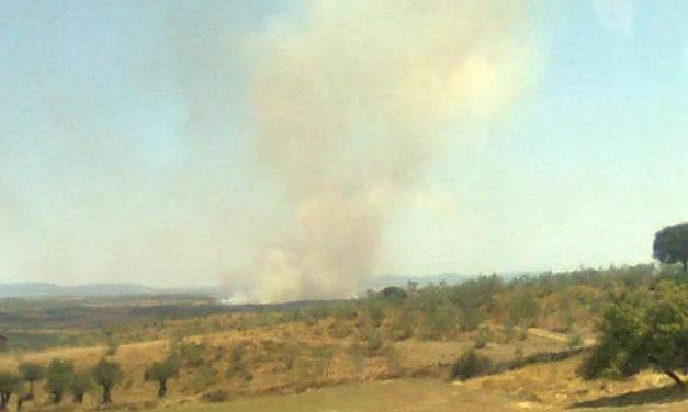 La temporada de peligro alto de incendios forestales en Extremadura se establece a partir del 1 de junio